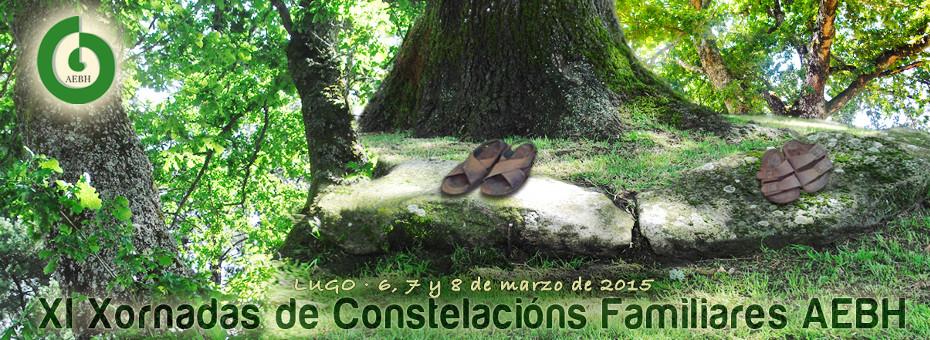 slider-bosque